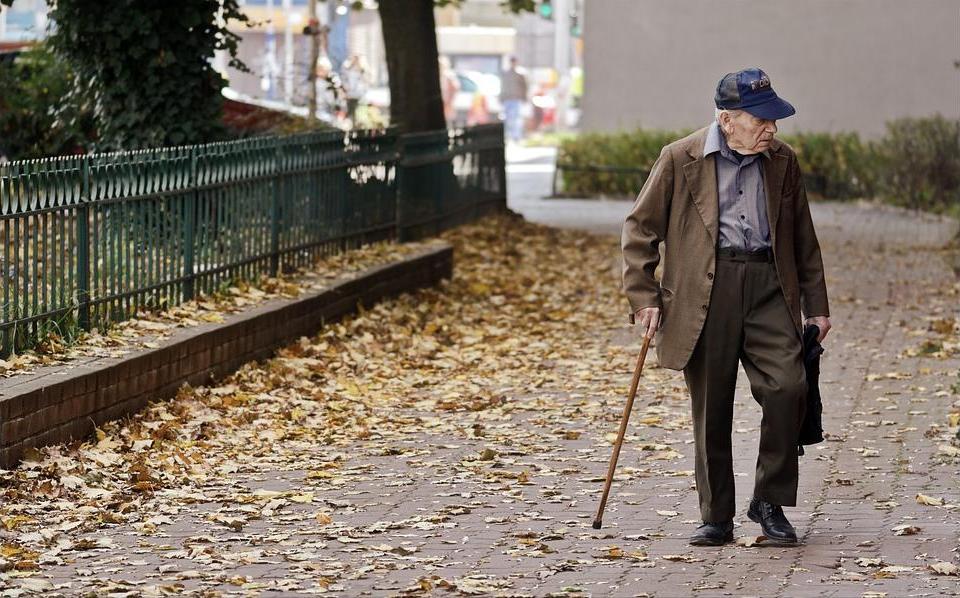 Как выбрать трость для ходьбы по улице
